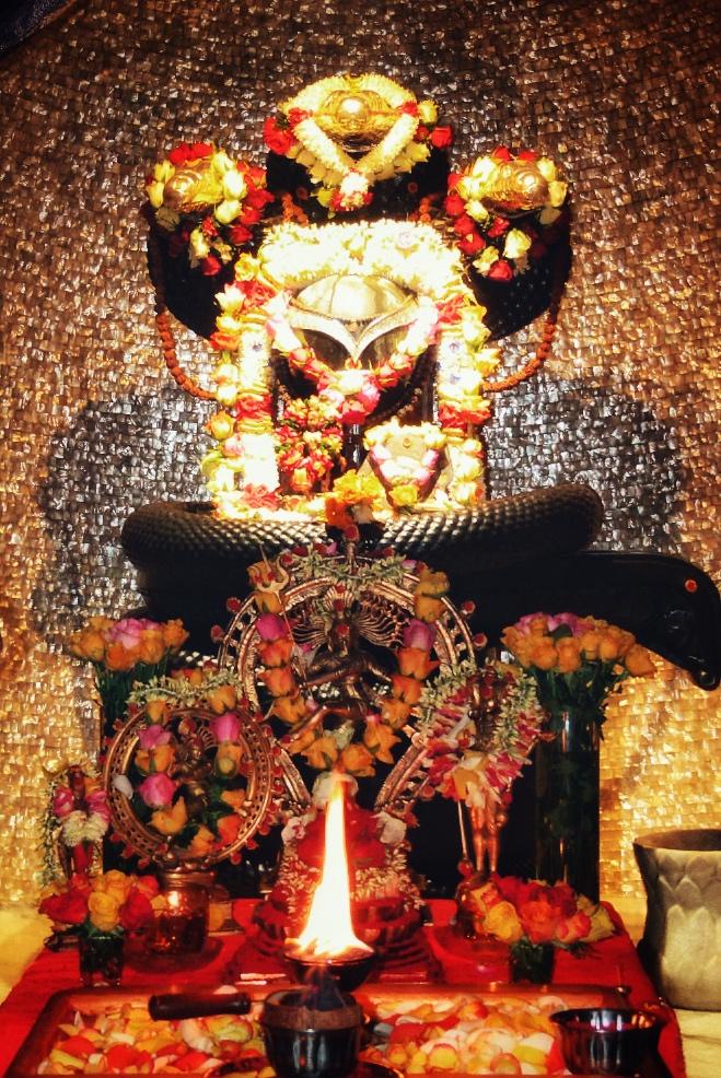 Mahashivaratri in Somaskanda Ashram